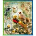 2008-4 年中国鸟小全张